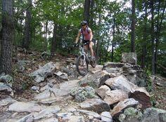 Featured Ride: Narrowback Mountain, Virginia