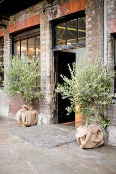 Olive Trees - Wedding Reception Warehouse | Planning by London Bride | Photography by Caught The Light