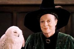 Professor Minerva McGonagall from Harry Potter, played by Maggie Smith. She rocks!