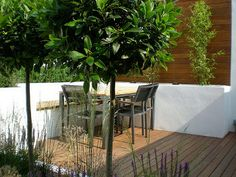 although a small garden the main seating area now feels like an enclosed space Courtyard Ideas, Small Courtyards, Outdoor Furniture Sets, Outdoor Decor, Garden Design, Feels, Patio, London, Space
