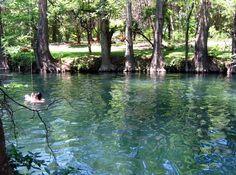 blue hole texas | Blue Hole, Wimberley, Texas