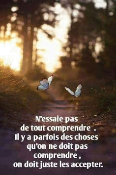 N'essaie pas... Staff Motivation, Daily Motivation, Positive Attitude, Positive Quotes, Quote Citation, Strong Words, French Quotes, Life Words, Spiritual Inspiration