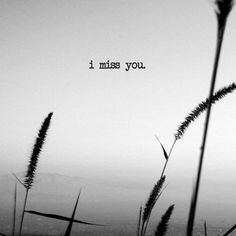 I want to text you everyday that I miss you,i want to tell you goodmorning and goodnight like I always have because I think about you everyday and that hasn't changed.