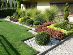 Ogród mały, ale pojemny;) - strona 107 - Forum ogrodnicze - Ogrodowisko