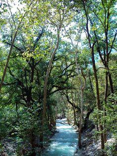"""El Parque Natural """"La Estanzuela"""" se encuentra dentro del polígono del Parque Nacional """"Cumbres de Monterrey""""."""