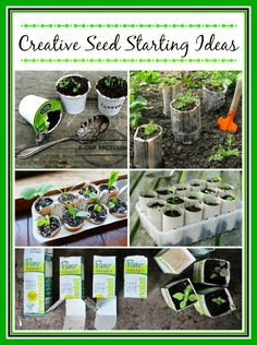 10 Creative Seed Starting Ideas- DIY Seed Containers It's time to start seeds! Don't spend money on pots or seed starter kits. Save money and start your seeds in recycled/repurposed containers. Lots of great ideas!