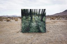 Beautiful Lies by Brian Oldham