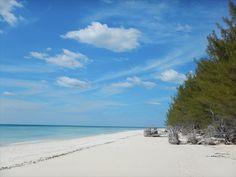 Old Freetown Beach, Grand Bahama, Bahamas.