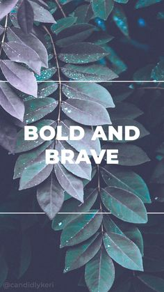 Bold and Brave greenery green and purple calligraphy typography inspirational motivational quote background wallpaper you can download for free on the blog! For any device; mobile, desktop, iphone, android!