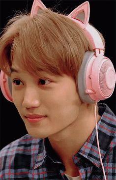 The perfect Kpop Kai Exo Animated GIF for your conversation. Exo Photoshoot, Gif Naruto, Exo Album, Exo Lockscreen, Jihyo Twice, Kim Jongin, Baekhyun Chanyeol, K Pop Star, Exo Memes