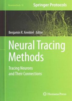Neural Tracing Methods: Tracing Neurons and Their Connections