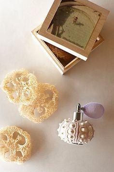 Stephanie Simek Honeymoon Fragrance #anthropologie