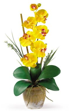 Phalaenopsis Silk Orchid with Planter in 8 colors   21 inches