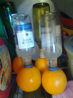 Vodka Oranges! - Recipe Included. Perfect for Adult Parties! (: