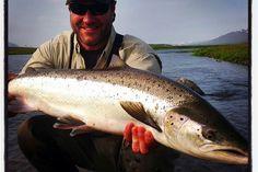 #Salmon #Iceland #Lachs #hitch #flyfishing