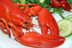 Seafood Dinner Feast