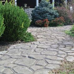 Pin By Katelyn Smoger On New House Yard Landscaping 640 x 480