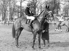Red Rum has been named the greatest Grand National horse of all time in a virtual race of champions.