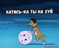 Dumb Pictures, Reaction Pictures, Wtf Funny, Funny Memes, Hello Memes, Russian Jokes, Stupid Cat, Fun Live, Cute Love Memes