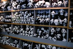 You Can Not Leave Without a Panda by Karon, via Flickr