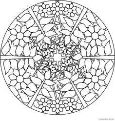 Free mandalas coloring > Plant Mandala Designs > Forest -Plant mandala 7
