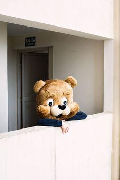 awwww he's just a big teddy bear isn't he? Animal Masks, Animal Heads, Big Teddy, Teddy Bear, Kawaii, Mood And Tone, Photo Art, Creepy, Beautiful