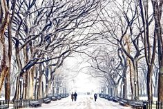 Love this NYC winter pic.