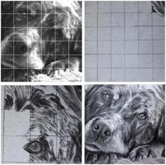 How to Transfer Any Image Using the Grid Method - Do you have a photograph, vintage print or postcard that you'd love to recreate as a painting or drawing, or use on a craft project? Learn how to transfer it with the classic Grid Method. This simple demonstration, from Learn-to-Draw-Lessons.com is about how to draw a dog. But, the principals are the same for any image you want to use and any media you like.
