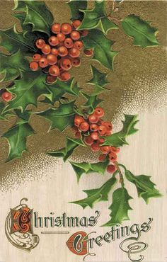 Vintage Christmas Postcard ~ Beautiful Holly!