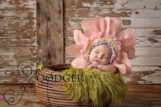 Gerbera Daisy Flower Blossom Bonnet ..original design by Imagination Couture .. newborn baby photography prop . Knitted Flower Hat for baby