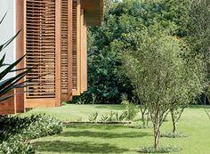 Detalhe   As cinco pitangueiras fazem um ziguezague. Embaixo dos quartos, o paisagista optou por singônios, que respondem bem a locais sombreados (Foto: Leonardo Finotti e Luis Gomes)