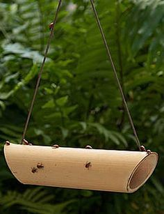 """I wouldn't pay retail for one of these as it's pretty simple to DIY - but a ladybug """"feeder"""" is a must for a gardener who prefers a natural way to get rid of aphids, mites, and most other insect pests to the garden. If there's not enough aphids/mites/etc., for them to prey on, keep some raisins in here or a lady bug attractant to have these voracious pest-eaters around always."""