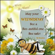 May Your Wednesday Be A Beautiful One good morning wednesday hump day wednesday quotes good morning quotes happy wednesday good morning wednesday wednesday quote happy wednesday quotes Wednesday Greetings, Wednesday Hump Day, Happy Wednesday Quotes, Good Morning Wednesday, Good Morning Wishes, Good Morning Quotes, Happy Friday, Morning Sayings, Thursday