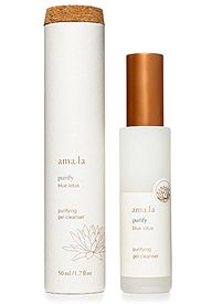 Find the amazing Purifying Gel Cleanser and the Amala line at Spirit Beauty Lounge.