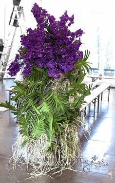Vanda orchid arrangement.