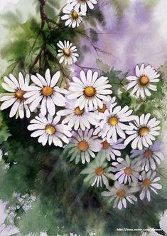 구절초를 수채화 작품으로 그리셨어요.한때 구절초에 빠지셔서 많이 그리셨는데그 덕분인지 이제 구절초는 ... Watercolor Pictures, Watercolor And Ink, Watercolor Flowers, Rose Oil Painting, Watercolour Painting, Botanical Art, Beautiful Artwork, Landscape Art, Flower Art