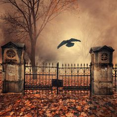 The house behind the gate by Caras Ionut on 500px