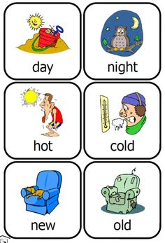 Fran's Freebies: Opposites Cards preschool fun set
