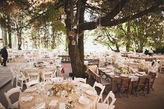 Wedding in the Woods seating