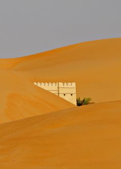 Qasr Al Sarab Resort 6 - Liwa Desert, United Arab Emirates by M. Khatib, via Flickr