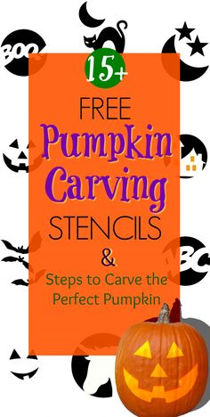 How to carve the perfect pumpkin with free and easy printable stencils Printable Pumpkin Stencils, Pumpkin Carving Stencils Free, Cute Pumpkin Carving, Pumpkin Template, Scary Pumpkin, Free Stencils, Simple Pumpkin Carving Ideas, Pumpkin Ideas, Halloween Templates