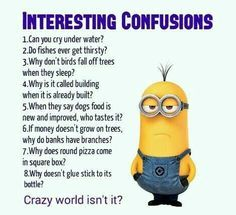 humor laughing so hard For all Minions fans this is your lucky day, we have collected some latest fresh insanely hilarious Collection of Minions memes and Funny picturess Funny Minion Pictures, Funny Minion Memes, Minions Quotes, Funny Jokes, Funny Sayings, Minion Humor, Memes Humor, Minions Fans, Minions Images