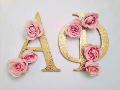 I joined a sorority Alpha Phi this year and it has already become a huge part of my life.