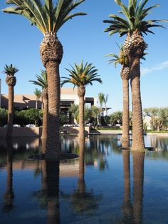 Week-end à Marrakech bonnes adresses Hotel Royal Palm l Leading Hotels of the world l La Fiancee du Panda blog mariage