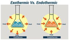 Endothermic and Exothermic Reactions Science Notes, Science Fun, Chemical Equation, Chemical Bond, Ap Chemistry, Heat Energy, Chemical Reactions, Photosynthesis, Physical Science