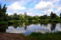 Natuurplas de Breuly ligt in Oud-Zevenaar (gemeente Zevenaar) aan de rand van het natuurgebied De Gelderse Poort en is ontstaan na een dijkdoorbraak. Sinds mei 2013 is de Breuly weer officieel toegankelijk voor zwemmers. Aan de oostkant van de Breuly zijn steigers aangelegd. Ook kunt u in dit gebied genieten van een heerlijke wandeling.
