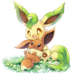 My first Pokémon was an eevee I named Persephone. After months of training and a moss stone, she evolved into the beautiful leafeon she is today. Persephone is the sweetest little thing, but will rage and burn if you get on her bad side. Pokemon Life, O Pokemon, Pokemon Fan Art, Pokemon Eeveelutions, Eevee Evolutions, Cute Pokemon Pictures, Cute Pictures, Pokemon Mignon, Budget Planer