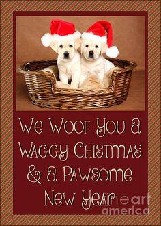 #Christmas #Greetingcards #adorable #JHughesDesigns