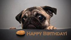 Alles Gute zum Geburtstag - http://www.1pic4u.com/blog/2014/05/17/alles-gute-zum-geburtstag-59/