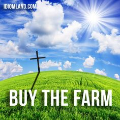 """Hello everybody!  Our #idiom of the day is """"Buy the farm"""", which means """"to die"""". #english #idioms"""